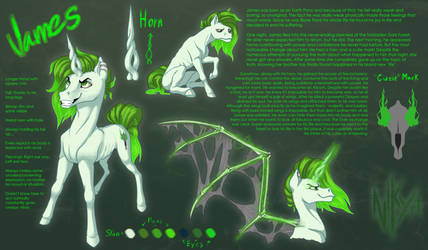 MLP James ref sheet by nikyri