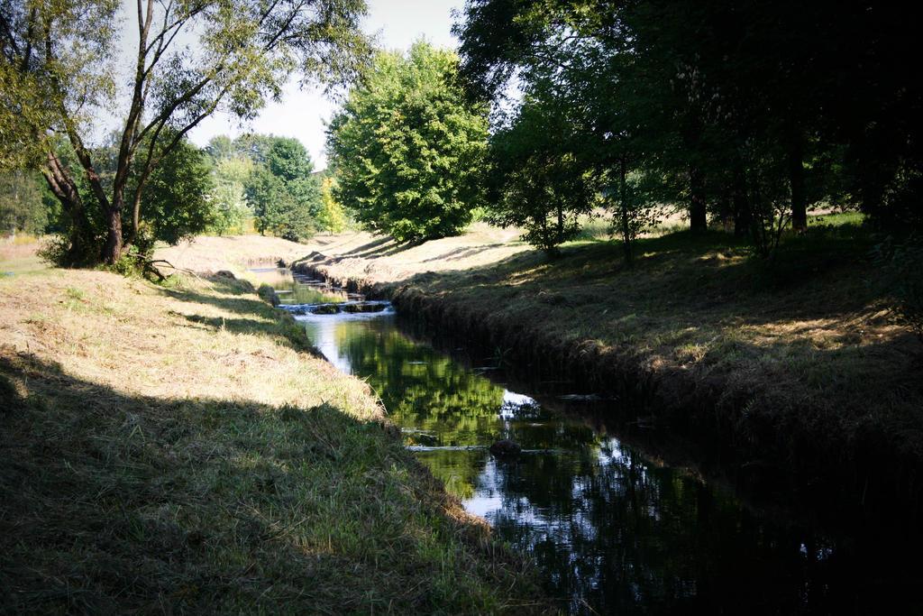 #nature by mydeerdog