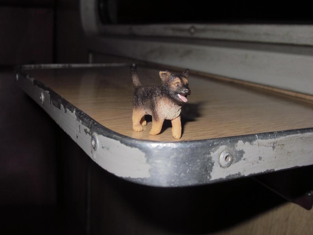 dog trip by mydeerdog