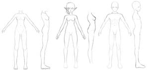 Front and Side Body references