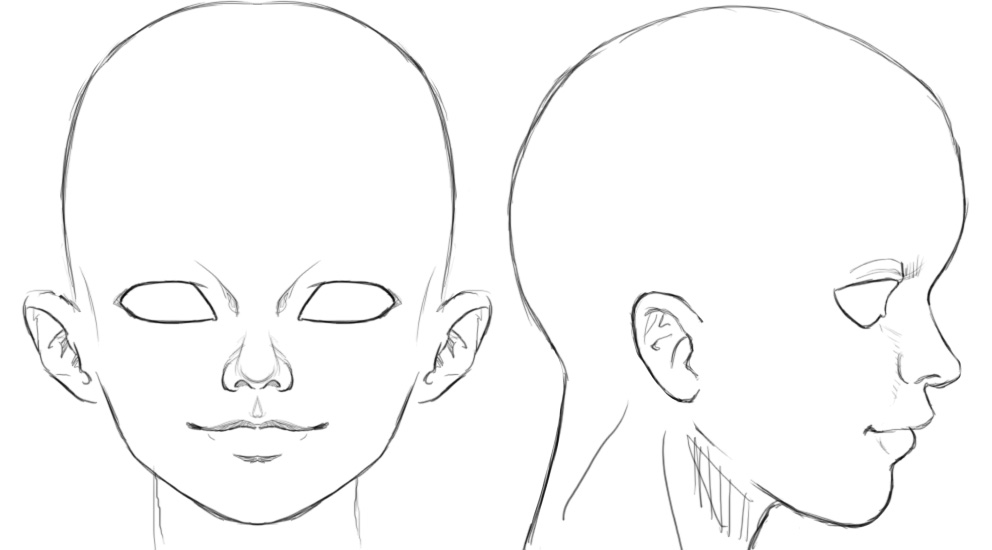 manga character template - ortho head reference by athey on deviantart