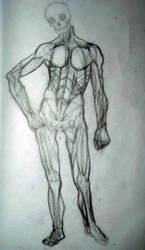 Anatomy by Hernysite
