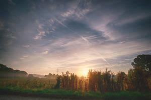 Foggy Sunrise by 1darkstar1