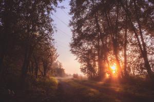 First Frozen Autumn Sunrise by 1darkstar1