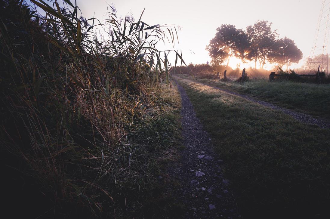 Morning Dew by 1darkstar1