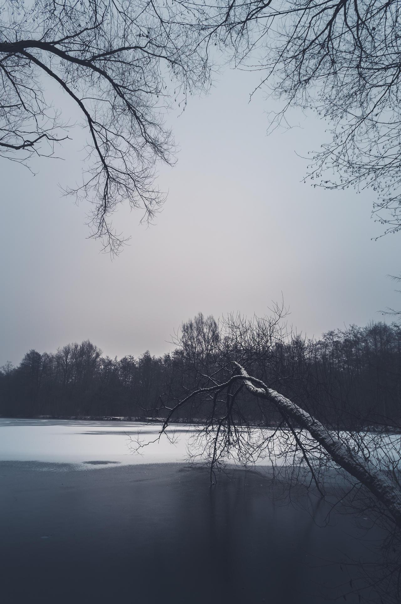 Winter Clean by 1darkstar1