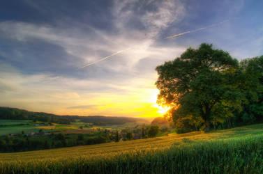 Summer Sunsets by 1darkstar1