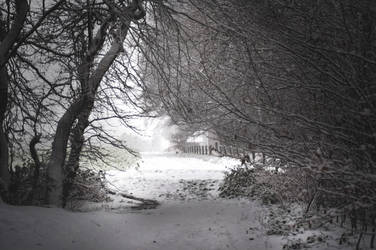 Winter Dreams by 1darkstar1