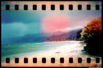 HOLGA 35mm series beach
