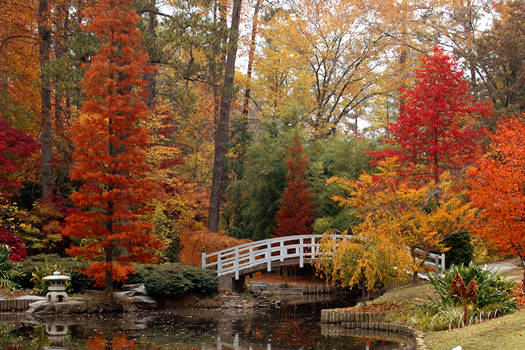 Duke Gardens in the Fall