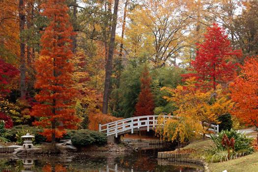 Duke Gardens in the Fall by mentaldragon