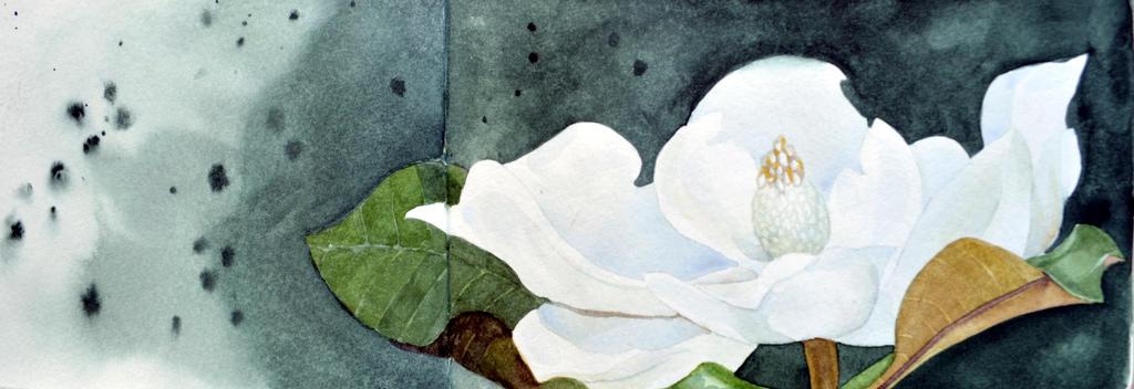 Magnolia by Olevia