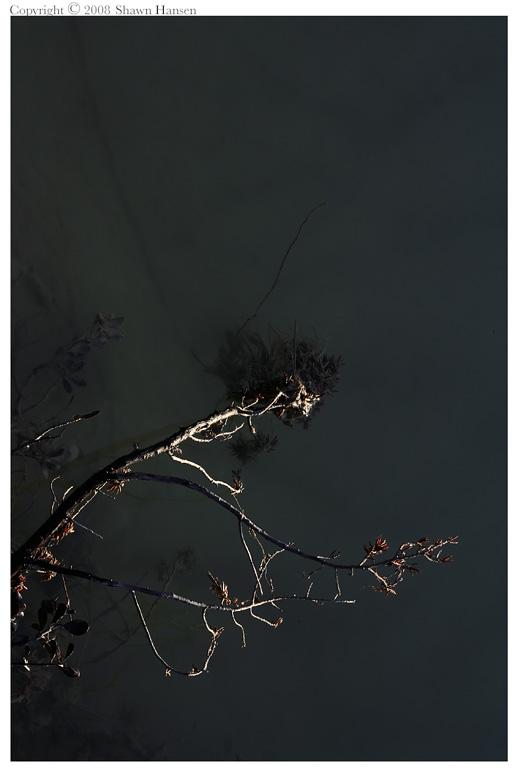 Iphigenia VI by wroth