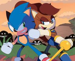 Sonic meets IDW Sally