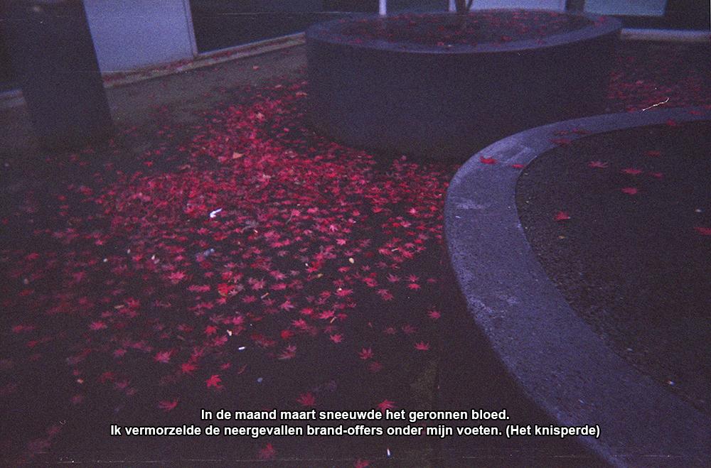 foto/tekst by Grafietstift