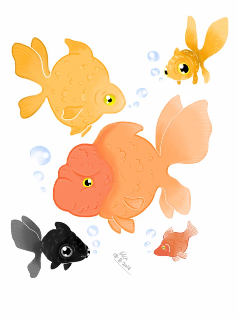 GoldFish  by D93-D