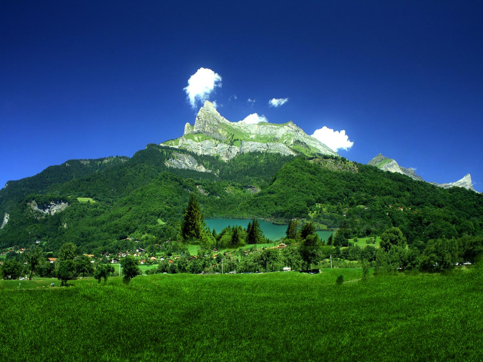 Natura images reverse search for Immagini desktop natura