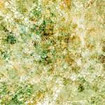 Deep Texture              5739