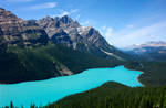 Peyto Lake in Canadian Rockies
