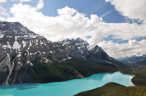 Lake Peyto by BeachGirlNikita