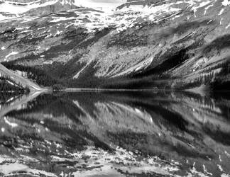Black and White Bow by BeachGirlNikita