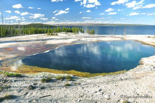 Hot Spring by Yellowstone Lake