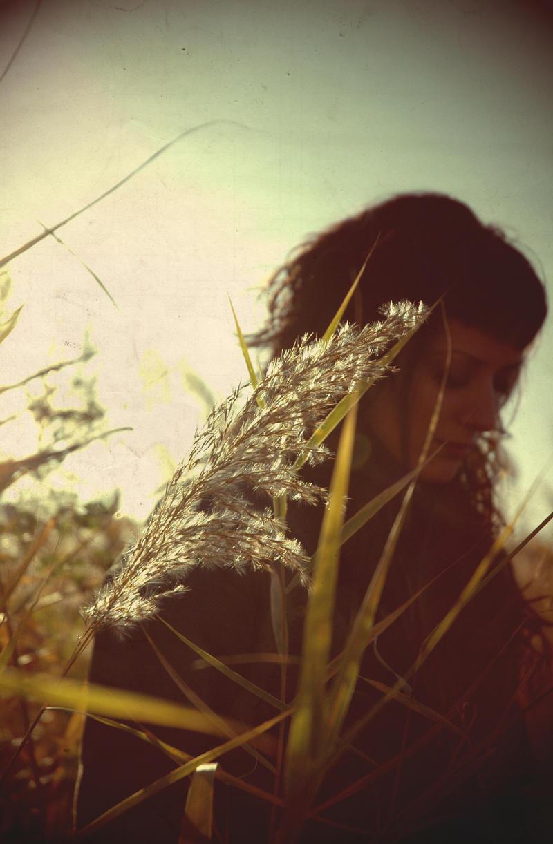 My Heart Was A Lonely Hunter by ktesnuko