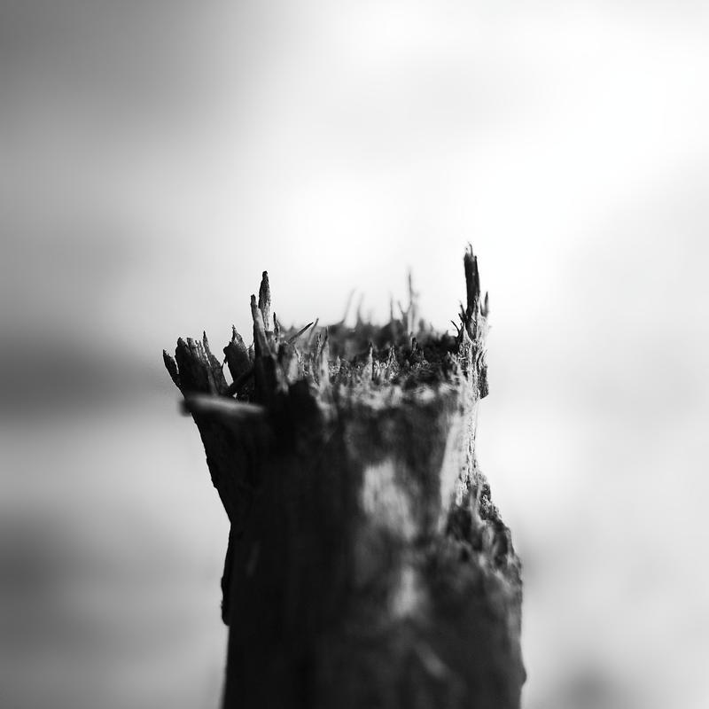 Feelings left behind by leoatelier