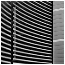 Lines by leoatelier