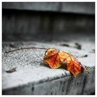 Poem about solitude