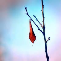 Hope by leoatelier