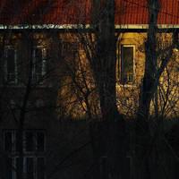 Windows between the trees by leoatelier