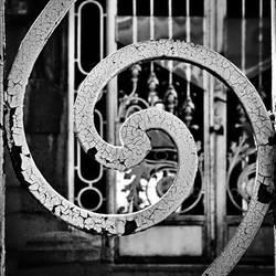 Symbiosis by leoatelier