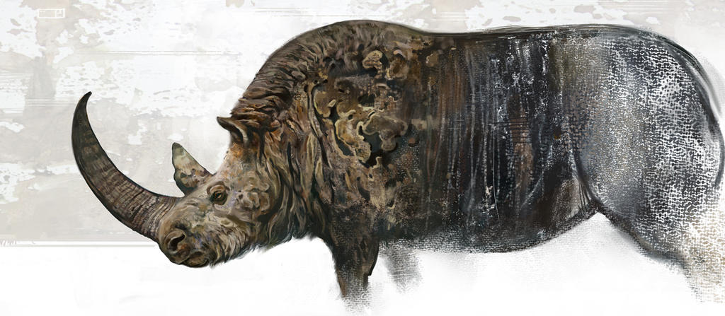 Woolly rhino by Dinomaniac