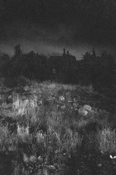 Walking towards the night