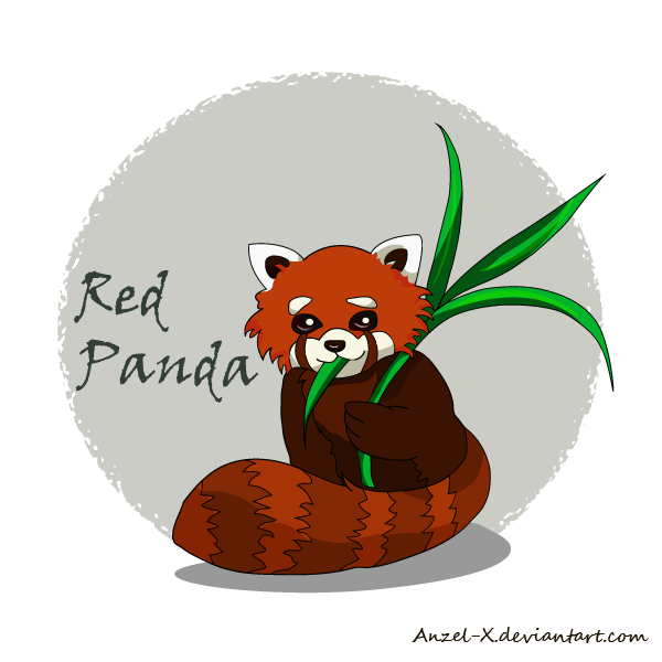 .:Red-Panda:. by Anzel-X