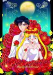 Usagi and Mamoru Chan Commission by Mom0San