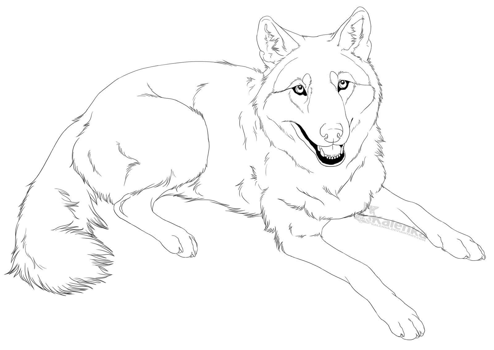 Line Drawing Of A Dog : Good dog com by kalenka on deviantart