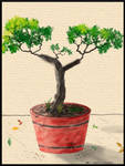 Tree in the Pot by EffectiveDisorders