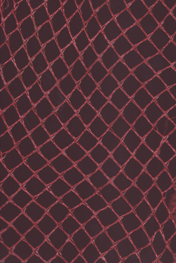 Net Texture 2 by emothic-stock