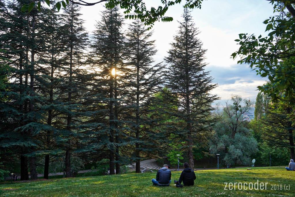 Sunset at Park by Zerocoder