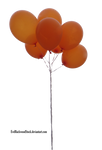 balloons PNG 3