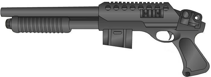 Clip fed shot gun
