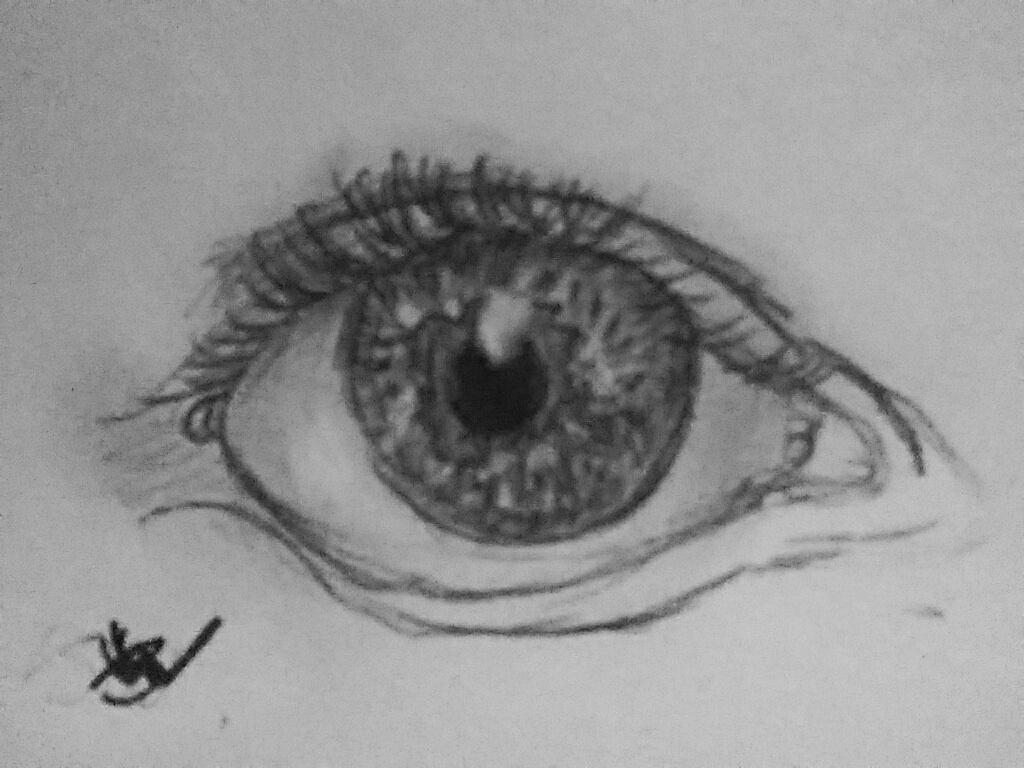 human eye w/ eyelashes by bookwormartist