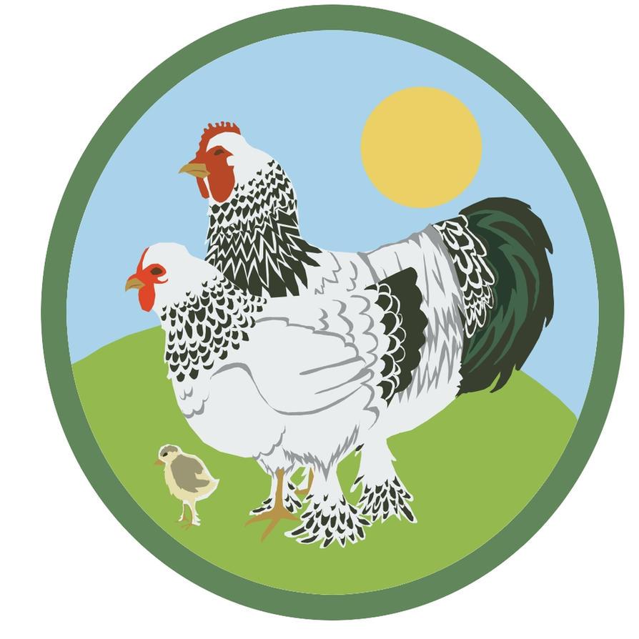 Chicken Farm Logo Design Chicken Farm Logo Sample by