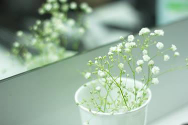 Flowers 1 by Marina-Kera