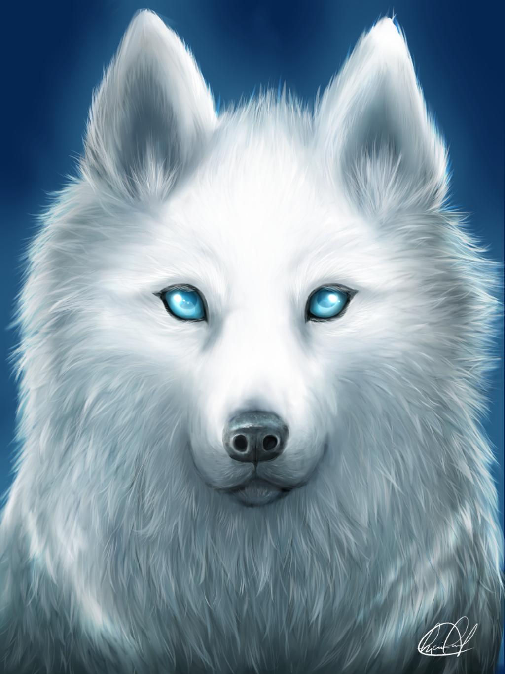 White Spirit Wolf By Kyo-chan12 On DeviantArt