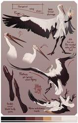 Character sheet: Seol by Liktar