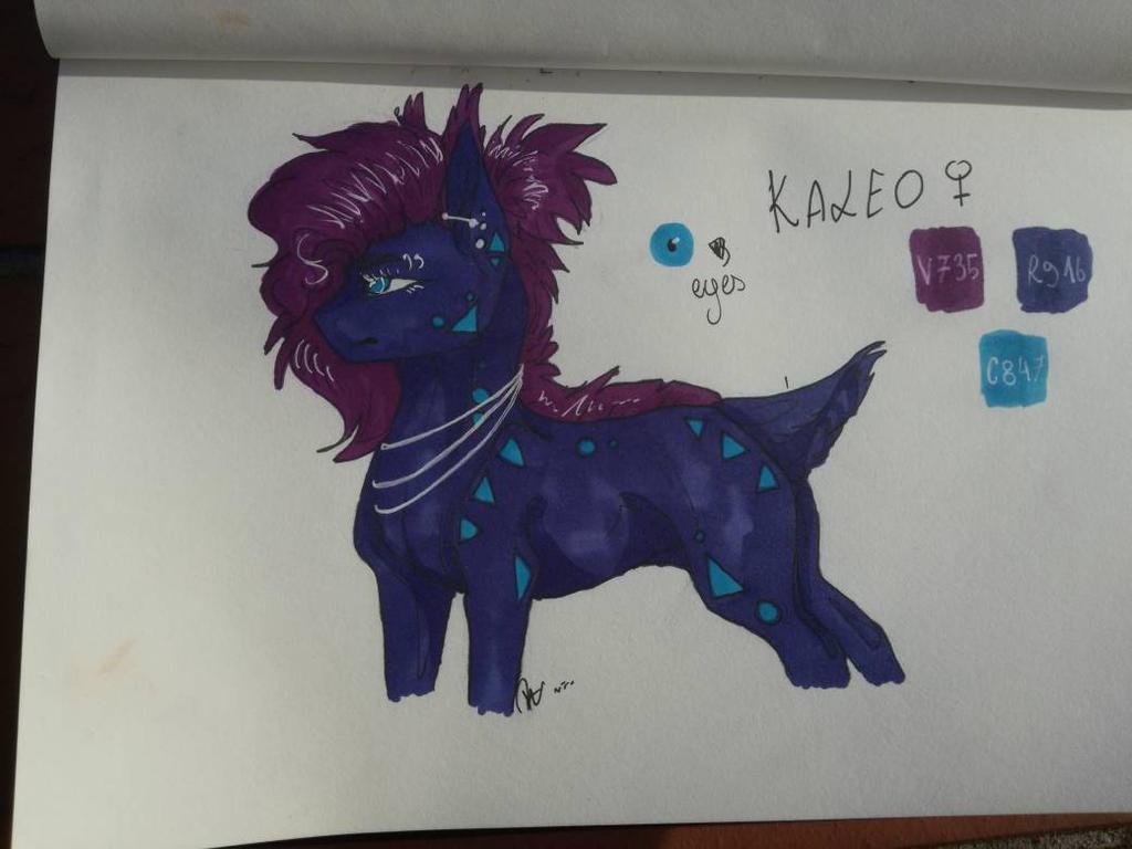 Kaleo by Versinjin