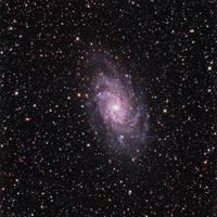 Triangulum Galaxy by DoomWillFindYou